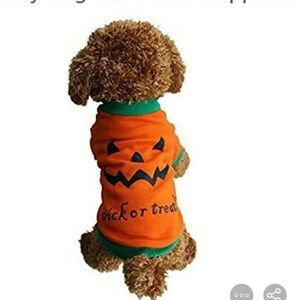 Trick or treat jack o lantern pumpkin dog costume